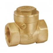 Hallmark Swing Check Valve 80mm